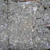 """Conglomerado con clastos silíceos Laguna Negra, entre los municipios de Vinuesa y Covaleda, Soria, en Castilla y León (España)"""". Ancho de imagen 1 m. (Autor: María Jesús M.)"""