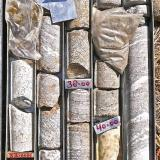 Gneiss con filones de pegmatita. Tal, Valle del Marsyangdi, Región de los Annapurnas, Nepal. Altura de la caja: 1,2 m Testigos de perforación en gneiss bandeado donde pueden verse varios tipos de orientación de los cristales, desde paralelos hasta casi un gneiss ocelar (augen gneiss, arriba a la derecha), que indica el mayor grado de metamorfismo antes de la anatexia (fusión total). Las vetas blancas son pegmatitas. (Autor: Josele)