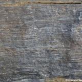 Corneana hornblendica, con marcada estructura foliada. (Autor: Frederic Varela)