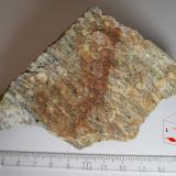 Gneis ocelar (sección transversal: cara T) Charches, Granada, Andalucía, España 6'5 x 10 cm. (Autor: prcantos)