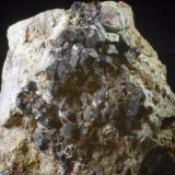 Granate Mina San Antonio - Bullas - Murcia - España 61 x 54 x 40 mm Colección y Fotografía de Joan Martinez Bruguera (Autor: Joan Martinez Bruguera)