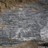 """Corneana hornblendica """"in situ"""". Serra de Collserola, Barcelona (ciudad), Barcelonès, Barcelona, Catalunya, España En este caso la corneana proviene de una roca sedimentaria formada por cenizas volcánicas que se depositaron durante el Ordovícico y que sufrieron el metamorfismo de contacto de la intrusión de los granitoides hercínicos. Estas rocas pertenecen a la aureola interna (la más cercana al granitoide) de este metamorfismo. Es una roca oscura, muy dura, con marcada estructura foliada y rica en hierro y magnesio. Puede observarse también la fractura típica. (Autor: Frederic Varela)"""