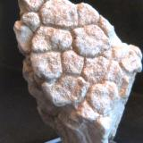 Caliza Guadalupe, Ubeda, Jaén, Andalucía, España 5,5 x 8 x 4 cm. Grietas de desecación fosilizadas (Autor: Felipe Abolafia)