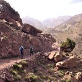 La escasa vegetación deja al descubierto la geología del lugar. (Autor: Josele)