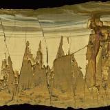 PaesinaValdarno (Val d'Arno), Provincia Arezzo, Toscana, Italia40 cm (Autor: marco campos-venuti)