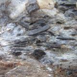 Esquisto con estaurolitaCoray, Finisterre, Bretaña/Bretagne, Francia4 cm. ancho de campo (Autor: prcantos)
