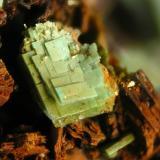 Metatorbernite<br />Senhora da Assunção Mine, Aldeia Nova, Ferreira de Aves, Sátão, Viseu District, Portugal<br />FOV 5 mm<br /> (Author: Cesar M. Salvan)