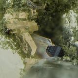 Anatasa sobre cuarzo<br />Mina Cogolla Alta, Belalcázar, Córdoba, Andalucía, España<br />Campo de visión de 5 mm.<br /> (Autor: Antonio Carmona)