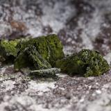 Vesignieite<br />Milpillas Mine, Cuitaca, Municipio Santa Cruz, Sonora, Mexico<br />FOV 1.5 cm<br /> (Author: Peter Megaw)