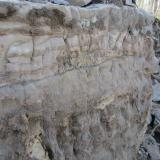 This image shows the sedimentary nature of the Little Falls dolostone. The exposed section is about 5' high and clearly shows a foamy silicified stromatolithic layer below a finer grained strata. The days digging began to the right of this corner. (Author: vic rzonca)