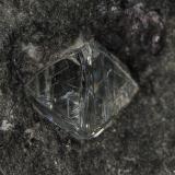 Diamond<br />Sedibeng Diamond Mine, Windsorton, Dikgatlong, Frances Baard, Northern Cape Province, South Africa<br />Approximately 4 mm wide<br /> (Author: am mizunaka)