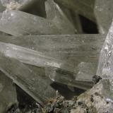 Olshanskyite<br />Shijiangshan Mine, Linxi, Ulanhad League, Inner Mongolia A.R., China<br />FOV 1.5 cm<br /> (Author: Cesar M. Salvan)