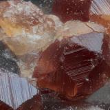 Spessartina (Espesartina)(Grupo Granate)<br />China<br />Campo 7 mm<br /> (Autor: Adolfo Ruiz)