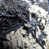Ferroactinolita-Tremolita (Serie)<br />Cantera Minera I, Cerro de los Serranos, Lebrija, Comarca Bajo Guadalquivir, Sevilla, Andalucía, España<br />4 cm. ancho de campo<br /> (Autor: prcantos)