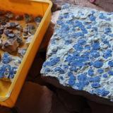 Azurite<br />Malbunka copper Mine, Western Aranda, Ltalaltuma, Australia<br /><br /> (Author: crocoite)
