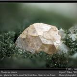 Titanite with ChloriteAiguille de Talèfre, Mont Blanc, Chamonix, Haute-Savoie, Auvergne-Rhône-Alpes, Franciafov 1.8 mm (Author: ploum)