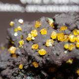 WulfenitaMina Whim Creek Copper, Arroyo Whim, Condado Roebourne, Australia Occidental, Australia55x30 mm (Autor: Ignacio)