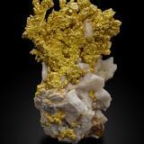 Gold on QuartzMina Mockingbird, Zona Colorado, Distrito Whitlock, Mother Lode Belt, Condado Mariposa, California, USA7,5x6,5x11,0cm (Author: MIM Museum)