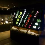"""_""""Nice drawings""""  According to Suzy Hakimian it's quite common to hear that comment when standing next to the tourmaline slabs display. (Author: Fiebre Verde)"""