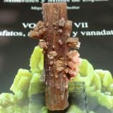 Aragonito<br />Afloramiento del Keuper, Barranco de El Tormagal, La Pesquera, Comarca La Manchuela Conquense, Cuenca, Castilla-La Mancha, España<br />20x65 mm<br /> (Autor: Ignacio)
