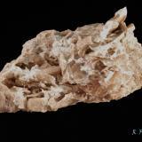 Axinita-(Mg)<br />Cantera Loma del Enjambradero, El Zurcido, Adamuz, Comarca Alto Guadalquivir, Córdoba, Andalucía, España<br />8 x 5 x 3 cm<br /> (Autor: Ricardo Fimia)