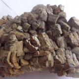 Vanadinite (variety endlichite)Touissit, Distrito Touissit, Provincia Jerada, Región Oriental, Marruecos10 x 6 x 2.5 cm (Author: Dave van Bladel)