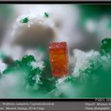 Wulfenite, Malachite and CuprosklodowskiteMina Musonoi, Kolwezi, Distrito Kolwezi, Cinturón de cobre de Katanga, Katanga (Shaba), Congo RD (Zaire)fov 1.8 mm (Author: ploum)