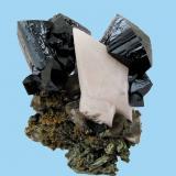 Ilvaite, Calcite, Actinolite, Quartz, Andradite<br />Dalnegorsk, Kavalerovo Mining District, Primorskiy Kray, Far-Eastern Region, Russia<br />64 mm x 61 mm<br /> (Author: Carles Millan)