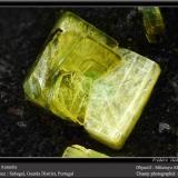 Autunite<br />Sabugal, Guarda District, Centro Region, Portugal<br />fov 2.2 mm<br /> (Author: ploum)
