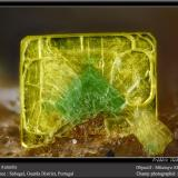 Autunite and torbernite<br />Sabugal, Guarda District, Centro Region, Portugal<br />fov 2.2 mm<br /> (Author: ploum)