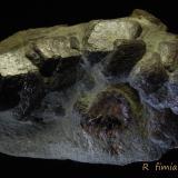 Almandino<br />Sierra Albarrana, Hornachuelos, Comarca Valle Medio del Guadalquivir, Córdoba, Andalucía, España<br />11 x 7 cm<br /> (Autor: Ricardo Fimia)